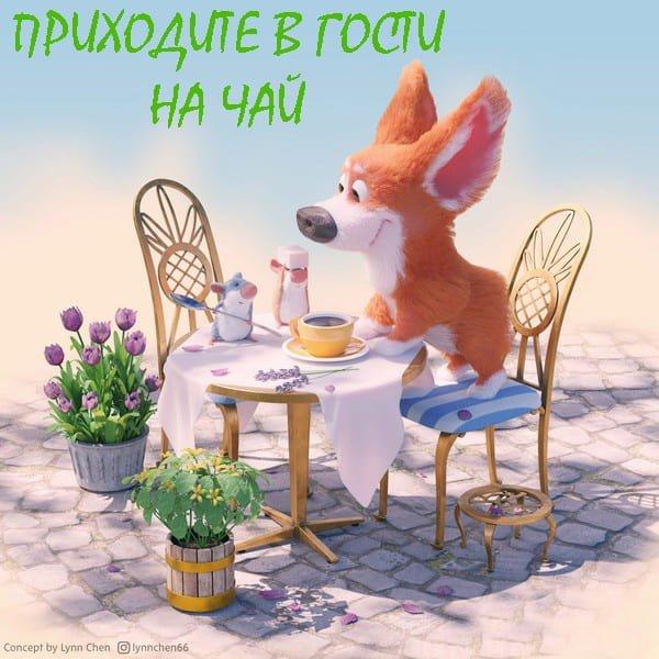 в гости чай попить