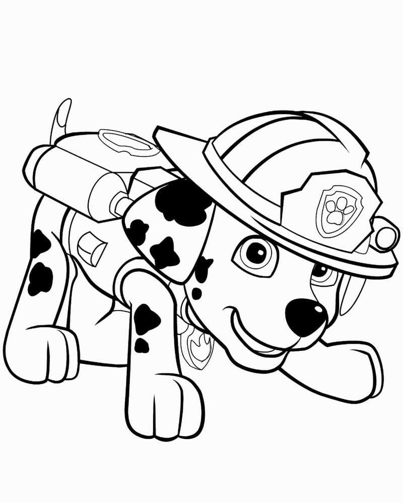 Coloriage Paw Patrol. Mighty pups. Imprimer A4