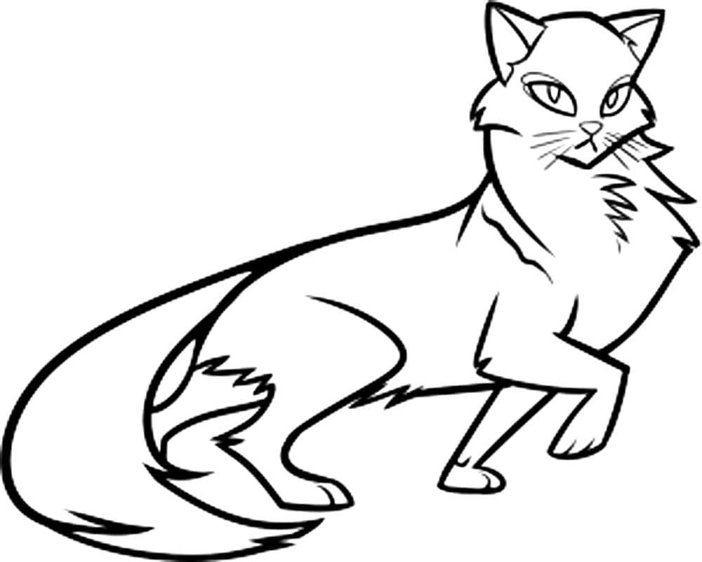 Раскраски Коты Воители. 90 Бесплатных раскрасок для печати