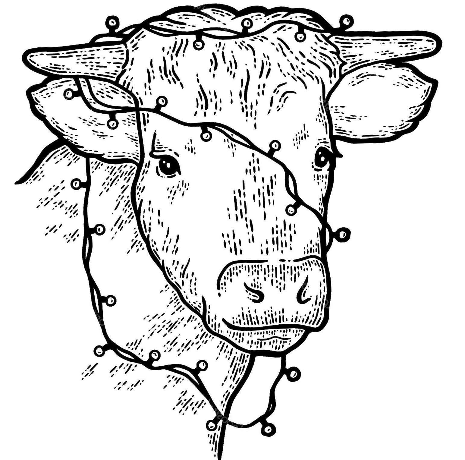 ausmalbilder neues jahr 2021  ausmalbilder büffel