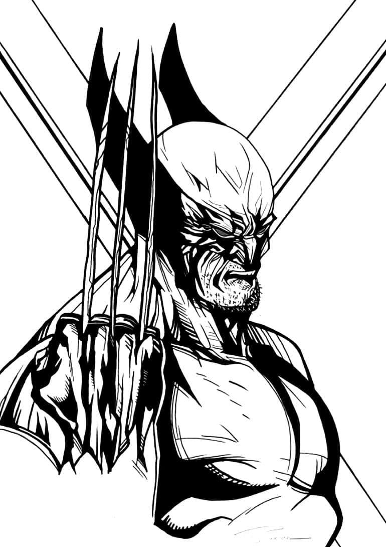 Coloriages de Wolverine. Imprimer gratuitement pour enfants