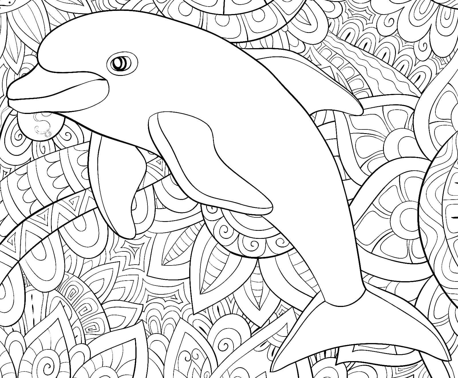 ausmalbilder delphin zum ausdrucken  wonder day