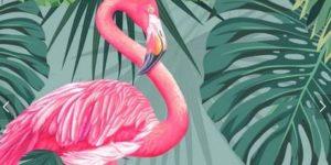 Dibujos de flamencos para colorear