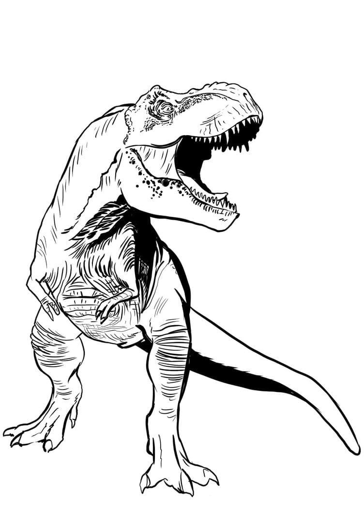 t-rex ausmalbilder. kostenlos zum ausdrucken