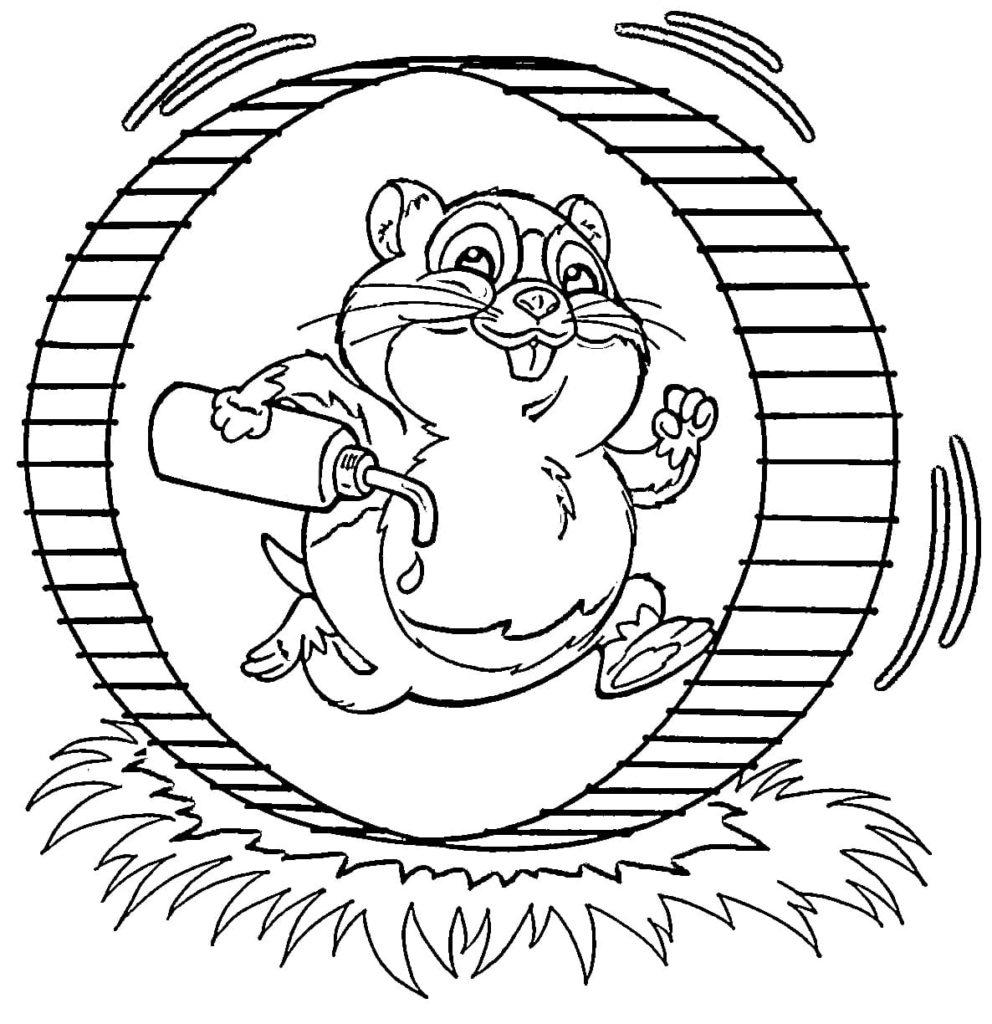 Ausmalbilder Hamster - 10 Malvorlagen zum Ausdrucken