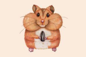 Ausmalbilder Hamster